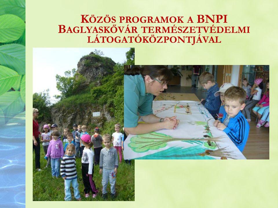 Közös programok a BNPI Baglyaskővár természetvédelmi látogatóközpontjával