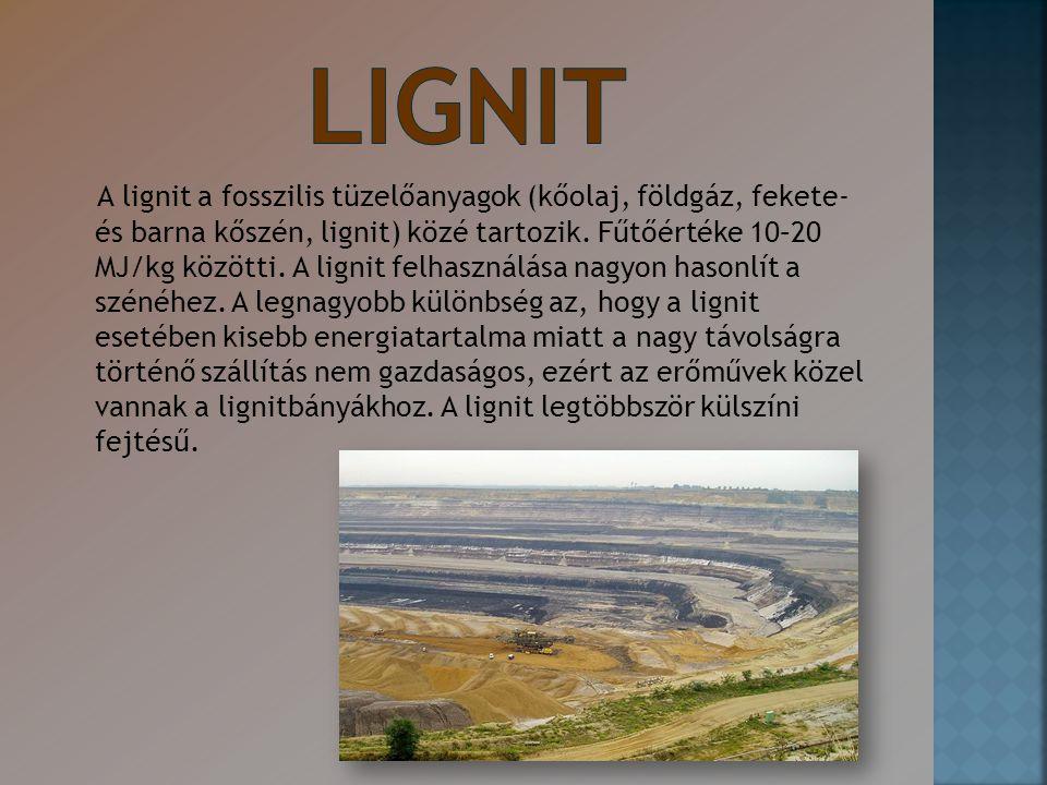 LIGNIT