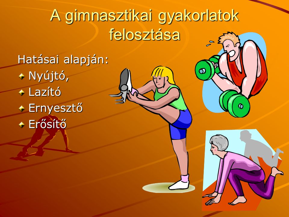 A gimnasztikai gyakorlatok felosztása