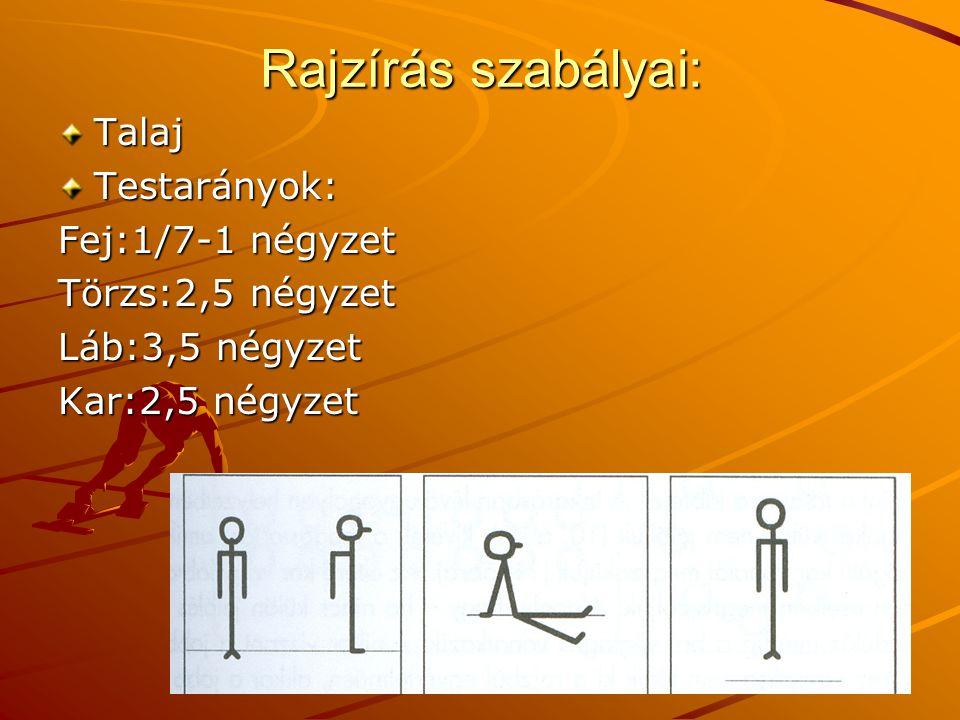 Rajzírás szabályai: Talaj Testarányok: Fej:1/7-1 négyzet