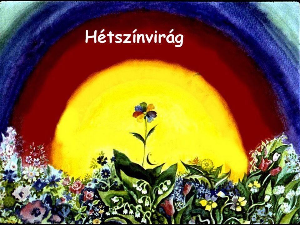 Hétszínvirág