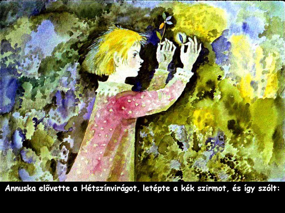 Annuska elővette a Hétszínvirágot, letépte a kék szirmot, és így szólt: