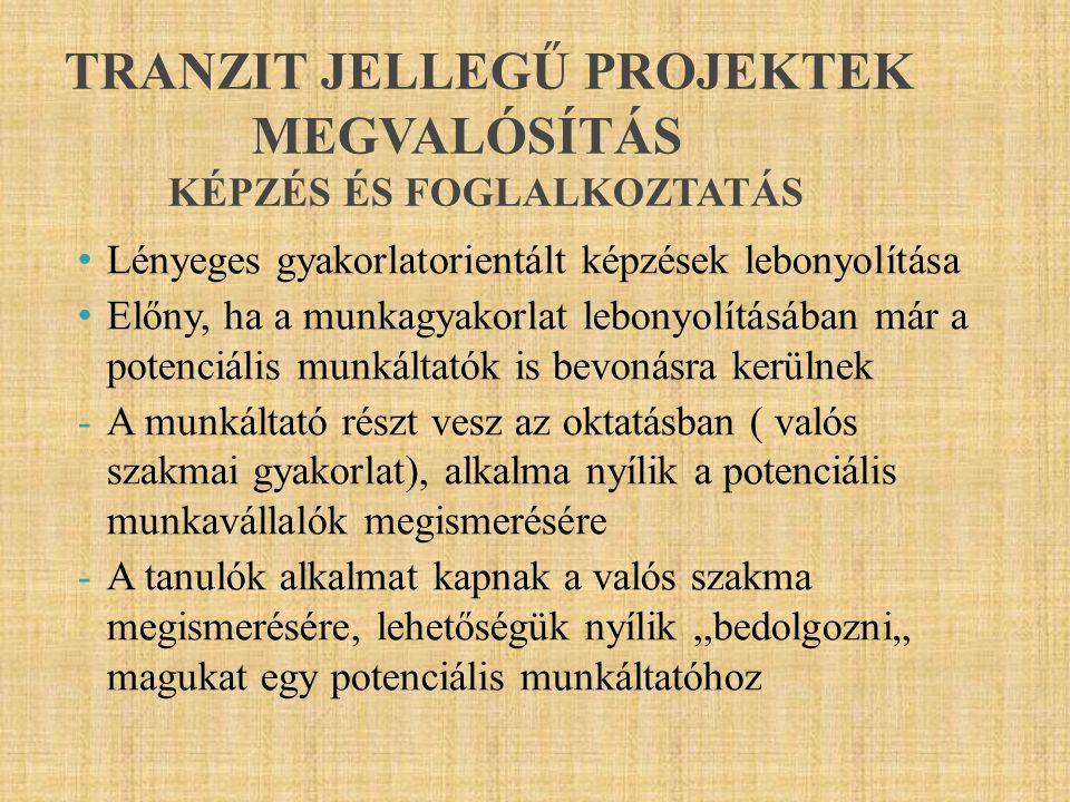 TRANZIT JELLEGŰ PROJEKTEK MEGVALÓSÍTÁS