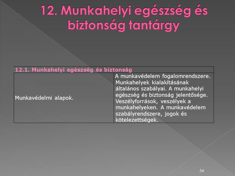 12. Munkahelyi egészség és biztonság tantárgy