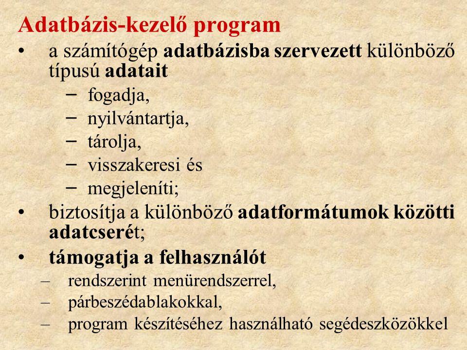 Adatbázis-kezelő program