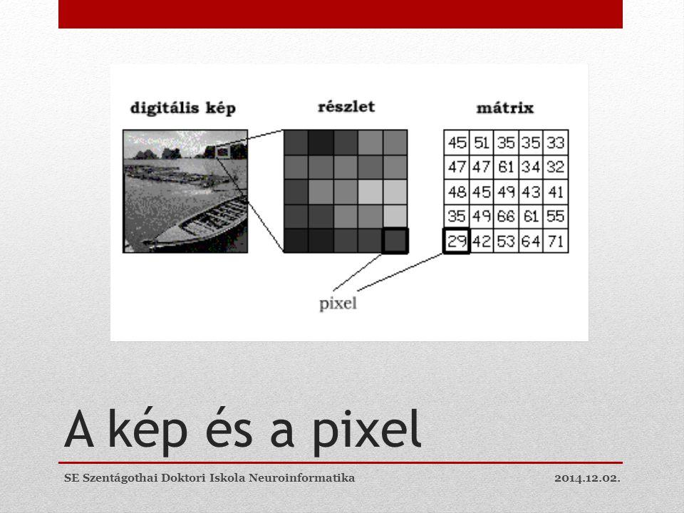 A kép és a pixel SE Szentágothai Doktori Iskola Neuroinformatika