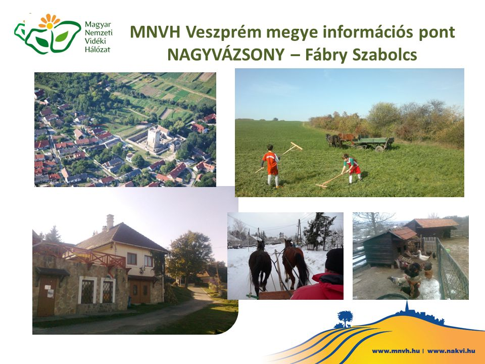 MNVH Veszprém megye információs pont NAGYVÁZSONY – Fábry Szabolcs
