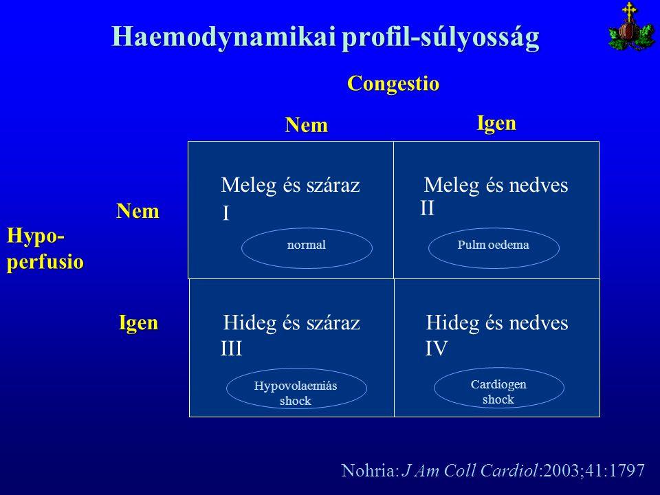 Haemodynamikai profil-súlyosság