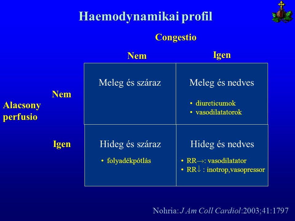 Haemodynamikai profil