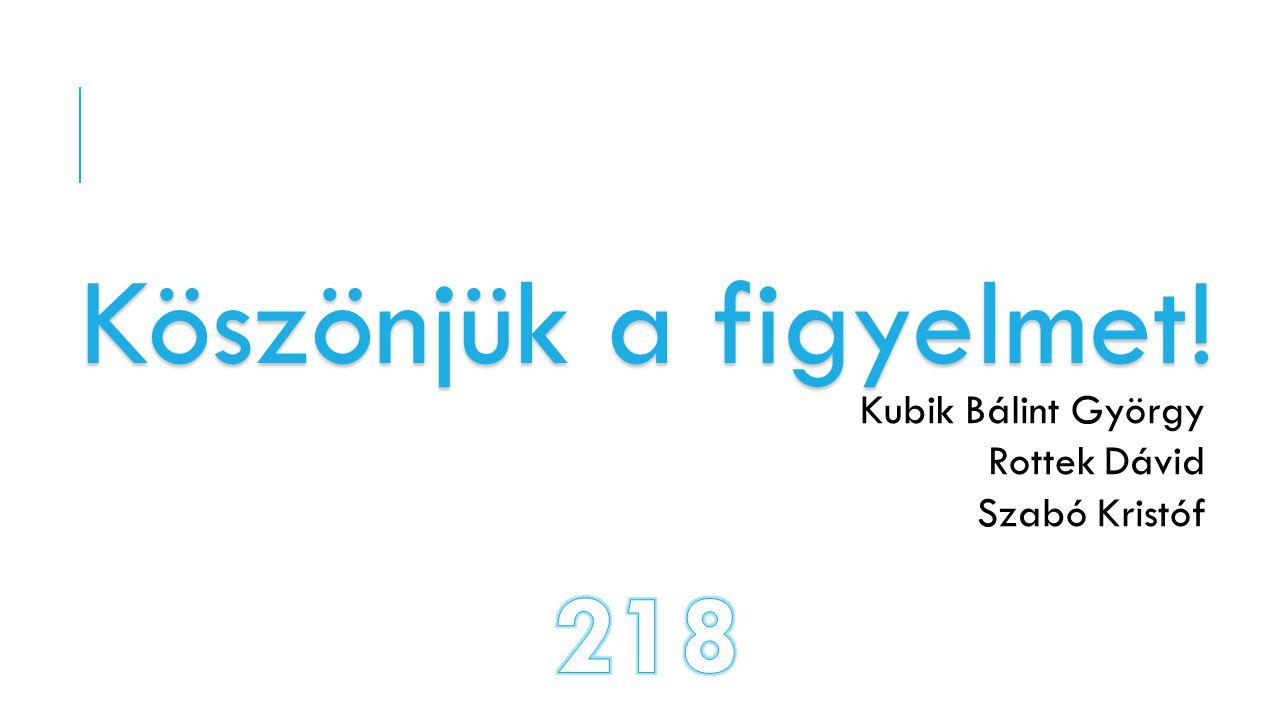 Köszönjük a figyelmet! 218 Kubik Bálint György Rottek Dávid