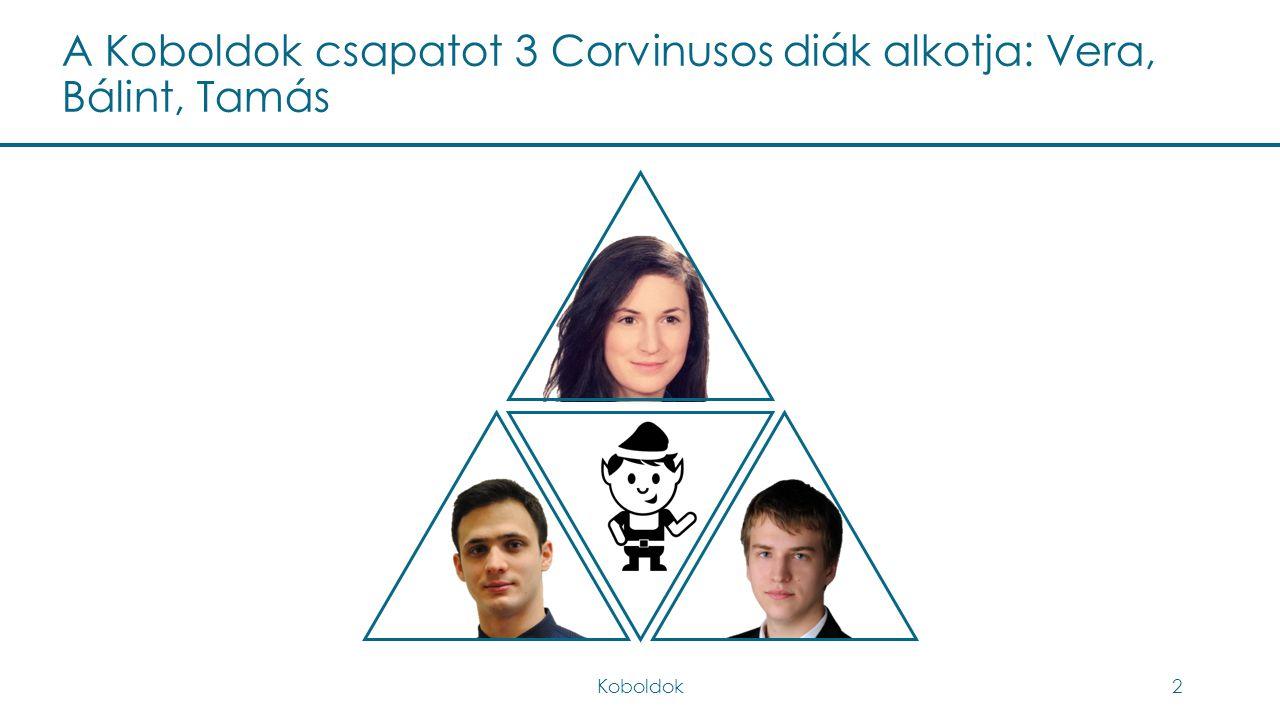 A Koboldok csapatot 3 Corvinusos diák alkotja: Vera, Bálint, Tamás
