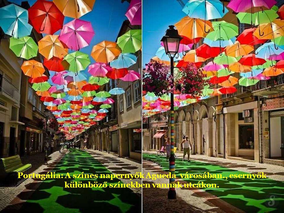 Portugália: A színes napernyők Agueda városában