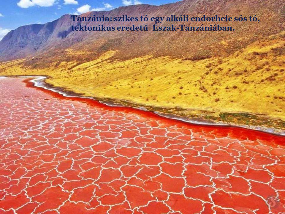 Tanzánia: szikes tó egy alkáli endorheic sós tó, tektonikus eredetű Észak-Tanzániában.