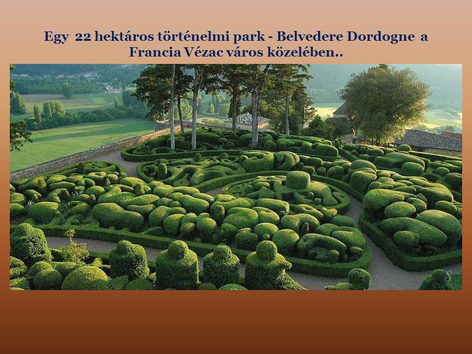 Egy 22 hektáros történelmi park - Belvedere Dordogne a Francia Vézac város közelében..
