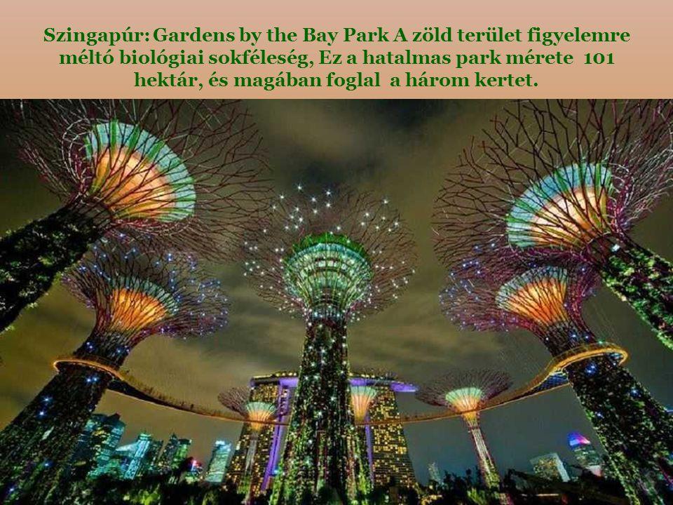 Szingapúr: Gardens by the Bay Park A zöld terület figyelemre méltó biológiai sokféleség, Ez a hatalmas park mérete 101 hektár, és magában foglal a három kertet.
