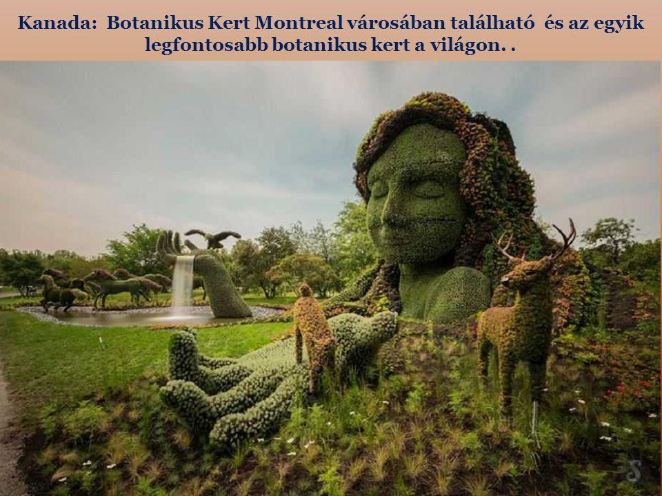Kanada: Botanikus Kert Montreal városában található és az egyik legfontosabb botanikus kert a világon.