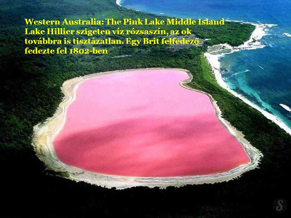 Western Australia: The Pink Lake Middle Island Lake Hillier szigeten víz rózsaszín, az ok továbbra is tisztázatlan. Egy Brit felfedező fedezte fel 1802-ben