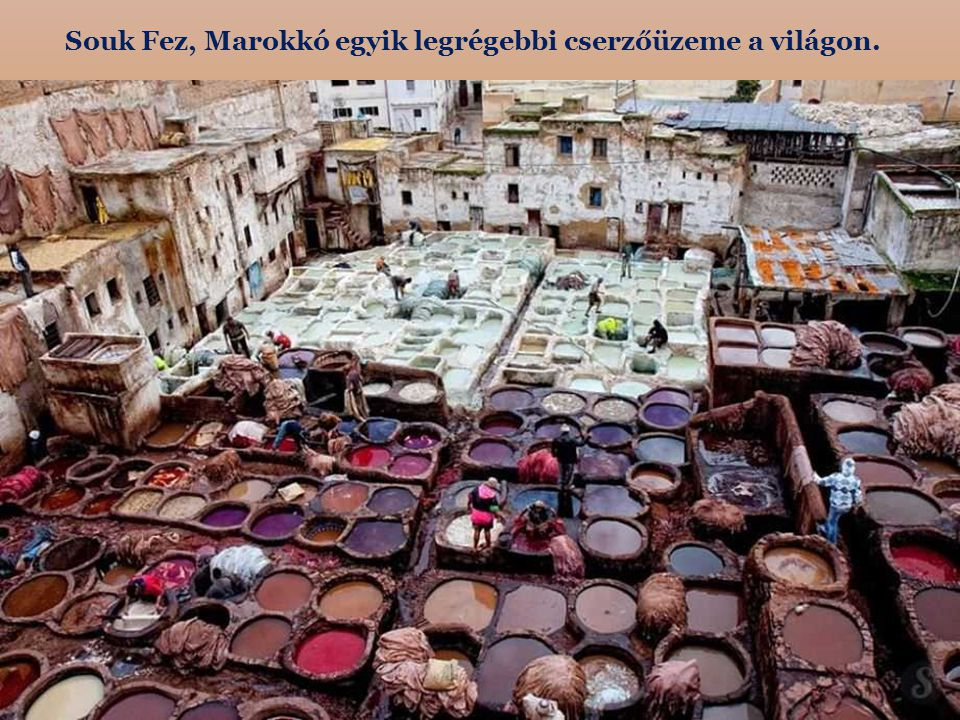 Souk Fez, Marokkó egyik legrégebbi cserzőüzeme a világon.