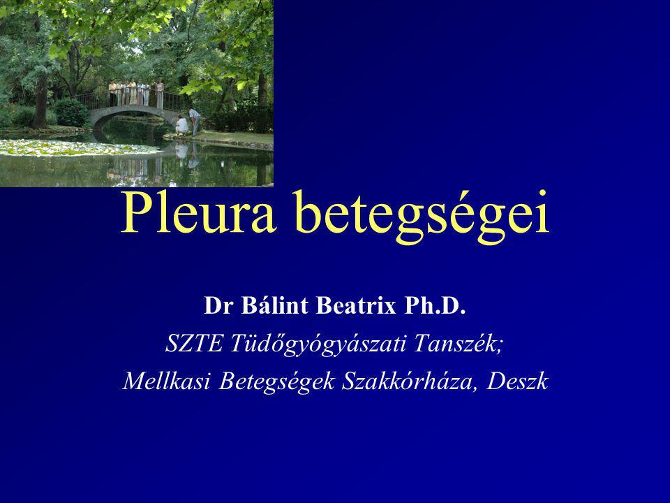 Pleura betegségei Dr Bálint Beatrix Ph.D.