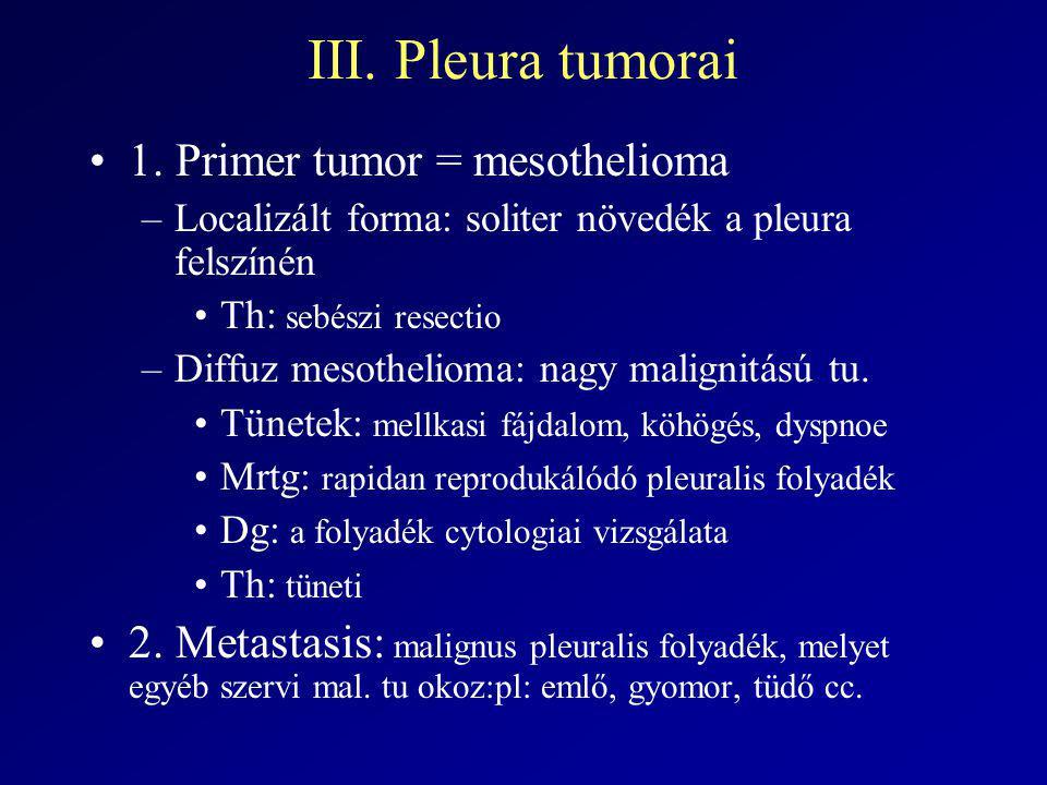 III. Pleura tumorai 1. Primer tumor = mesothelioma