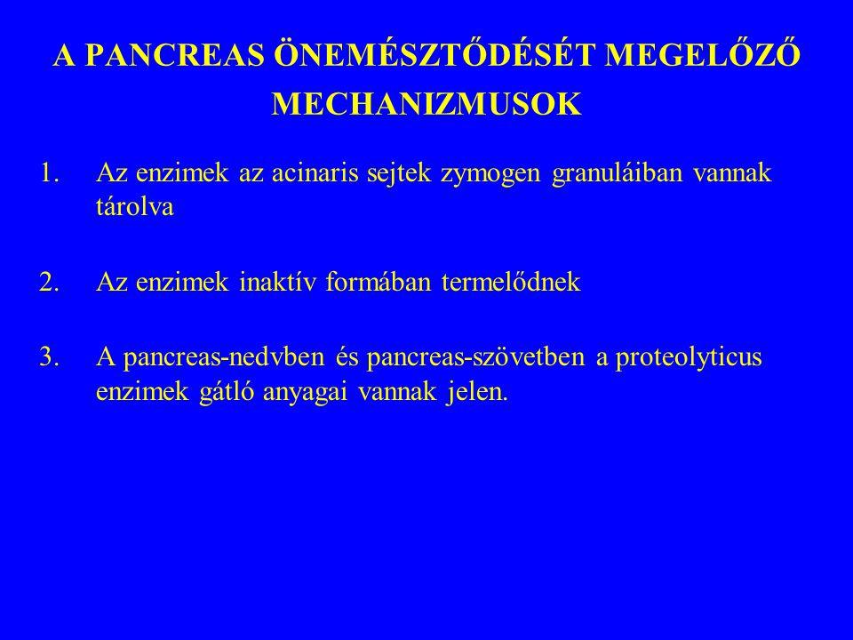 A PANCREAS ÖNEMÉSZTŐDÉSÉT MEGELŐZŐ MECHANIZMUSOK