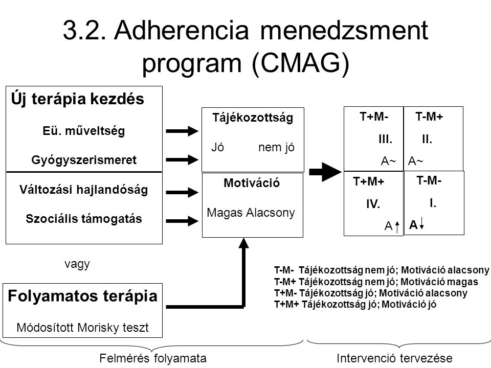 3.2. Adherencia menedzsment program (CMAG)