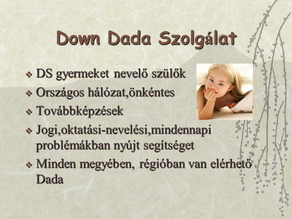 Down Dada Szolgálat DS gyermeket nevelő szülők