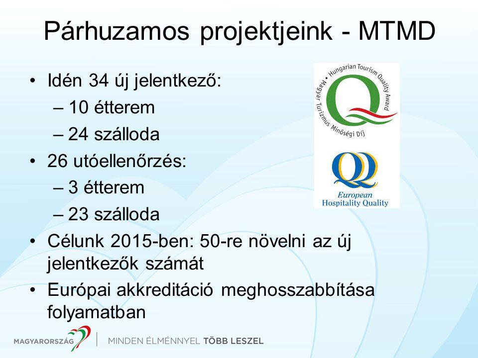 Párhuzamos projektjeink - MTMD