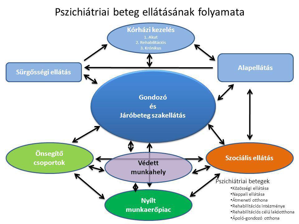 Pszichiátriai beteg ellátásának folyamata