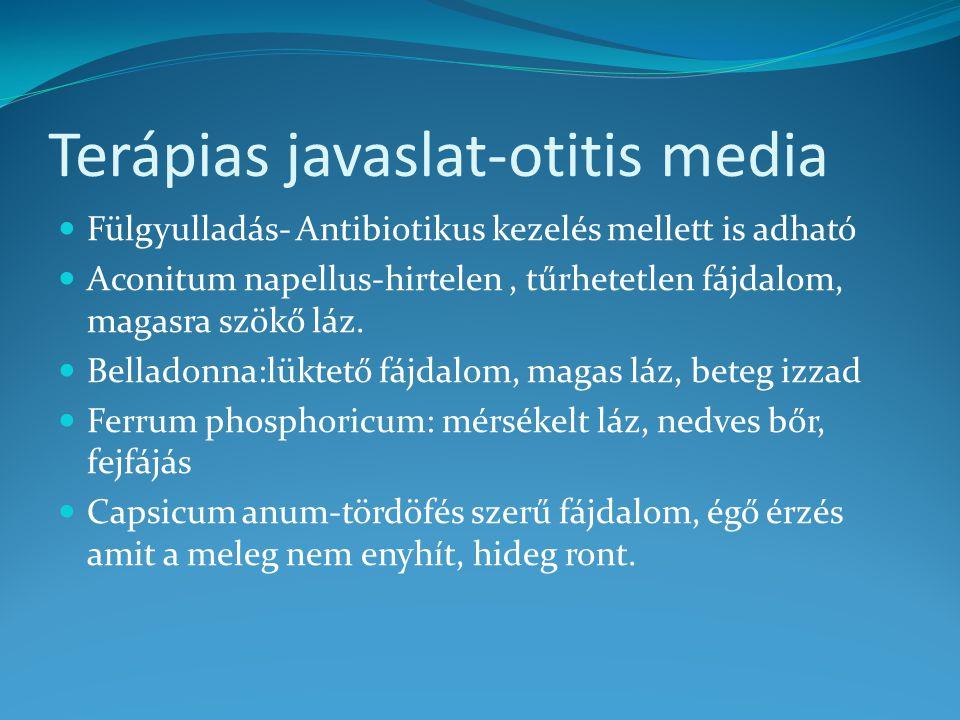 Terápias javaslat-otitis media
