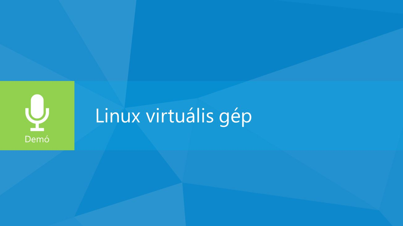 Linux virtuális gép