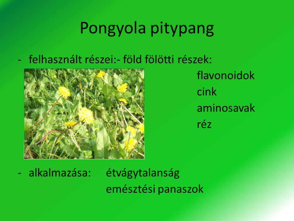 Pongyola pitypang felhasznált részei:- föld fölötti részek: