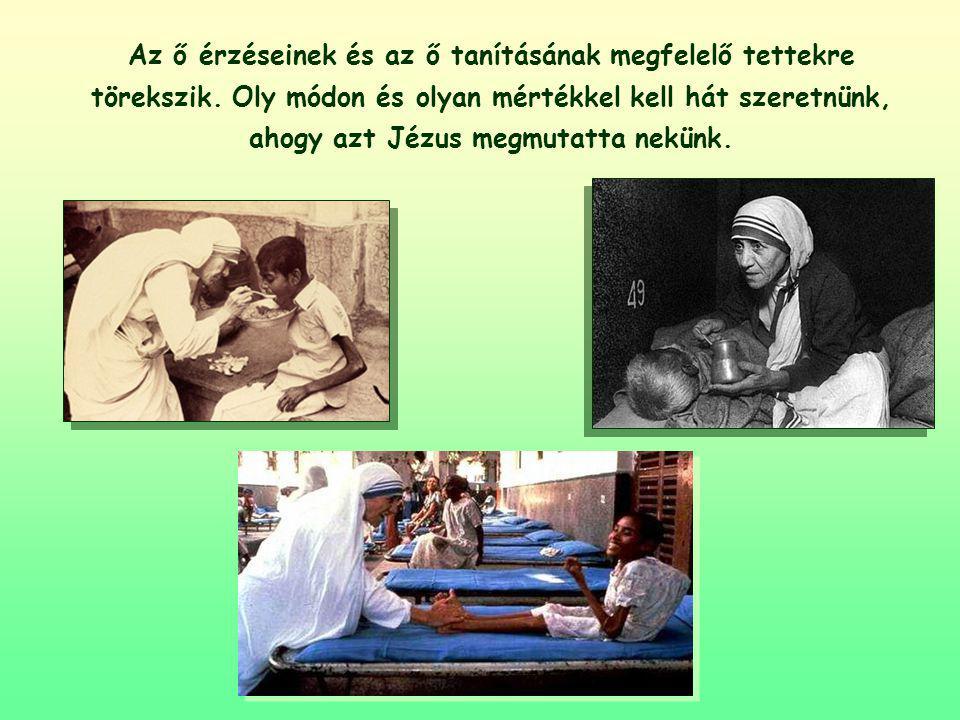Az ő érzéseinek és az ő tanításának megfelelő tettekre törekszik