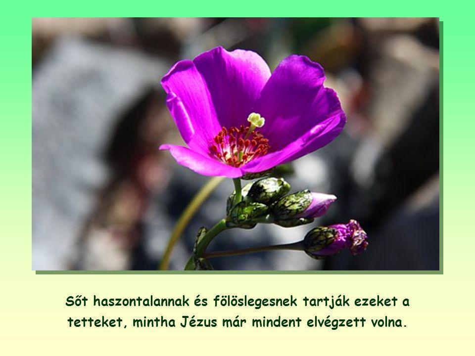 Sőt haszontalannak és fölöslegesnek tartják ezeket a tetteket, mintha Jézus már mindent elvégzett volna.
