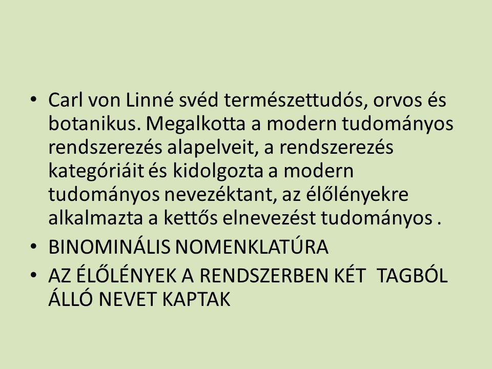 Carl von Linné svéd természettudós, orvos és botanikus