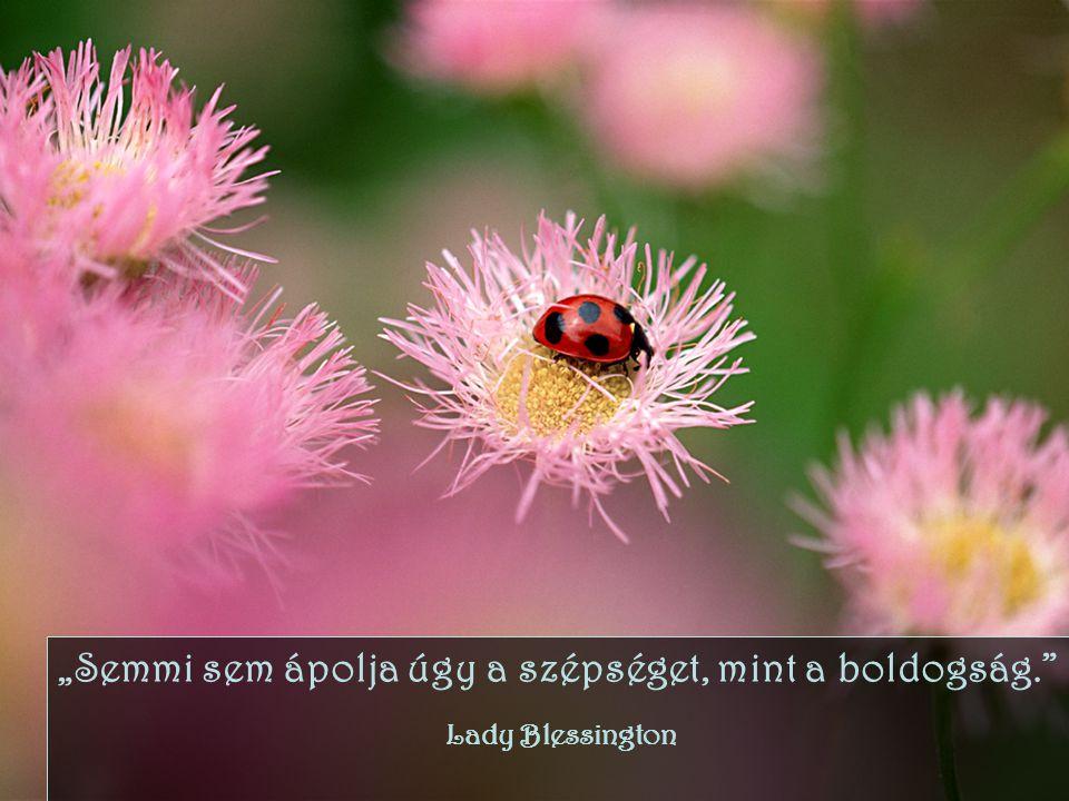 """""""Semmi sem ápolja úgy a szépséget, mint a boldogság."""