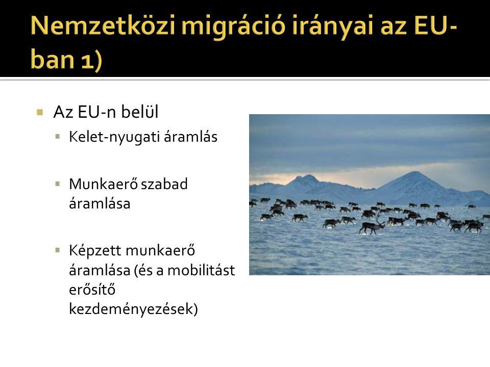 Nemzetközi migráció irányai az EU-ban 1)
