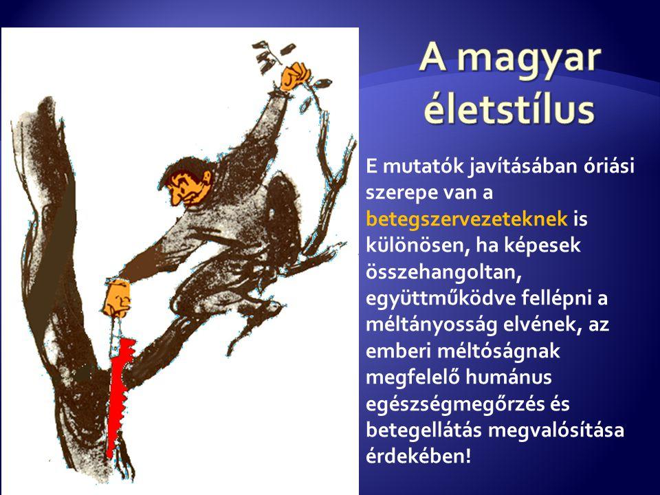 A magyar életstílus