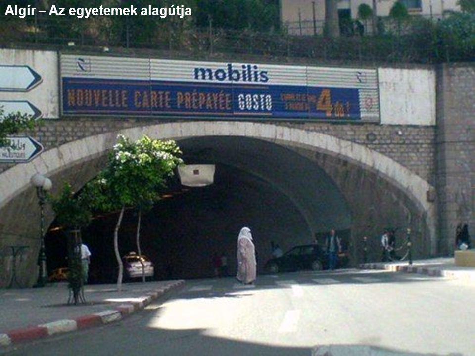 Algír – Az egyetemek alagútja