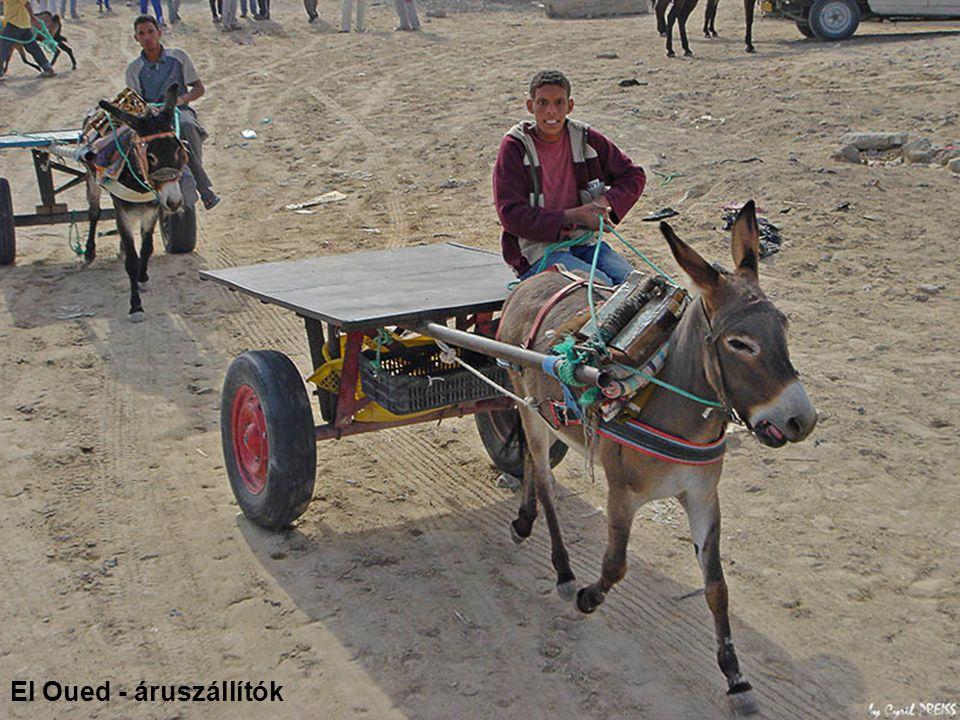 El Oued - áruszállítók