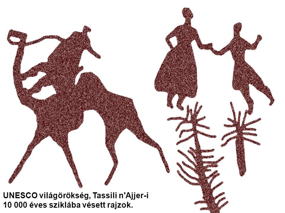UNESCO világörökség, Tassili n Ajjer-i 10 000 éves sziklába vésett rajzok.