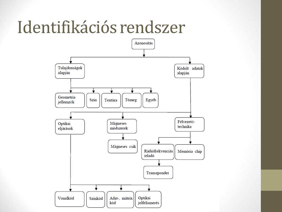 Identifikációs rendszer