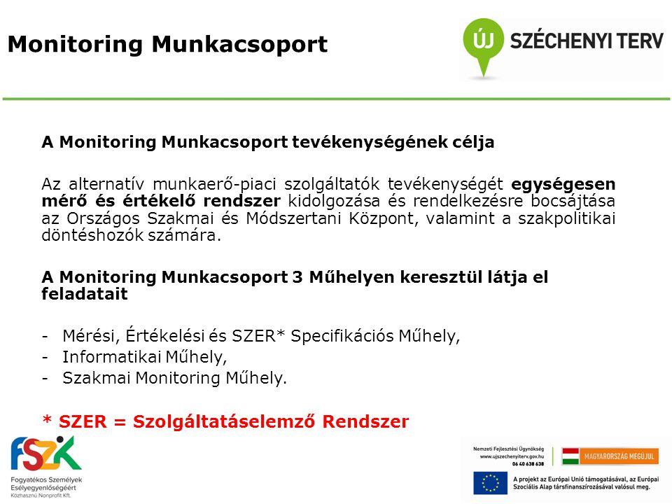 Monitoring Munkacsoport