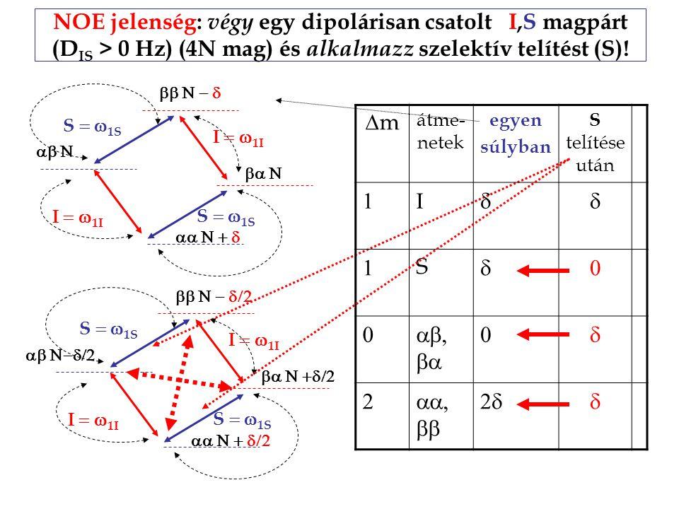 NOE jelenség: végy egy dipolárisan csatolt I,S magpárt (DIS > 0 Hz) (4N mag) és alkalmazz szelektív telítést (S)!