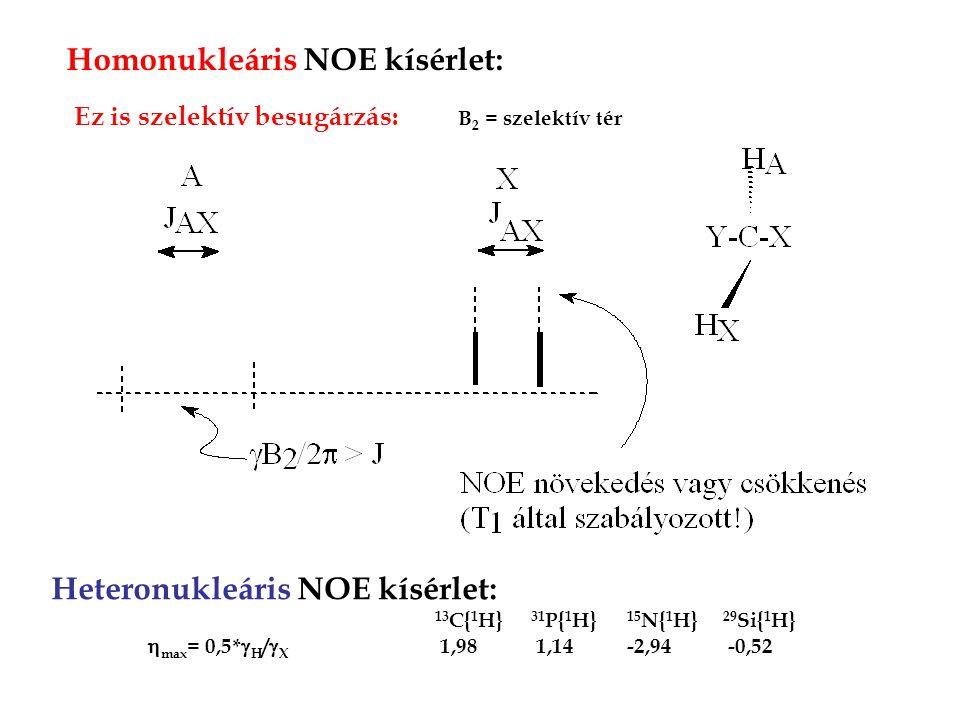 Homonukleáris NOE kísérlet: