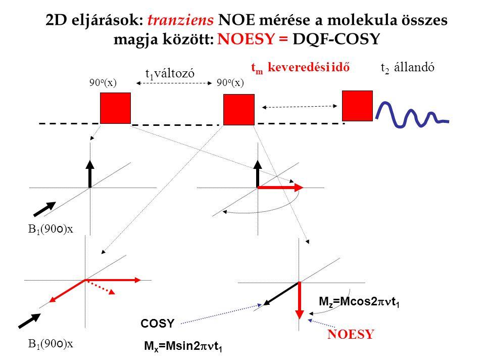 2D eljárások: tranziens NOE mérése a molekula összes magja között: NOESY = DQF-COSY