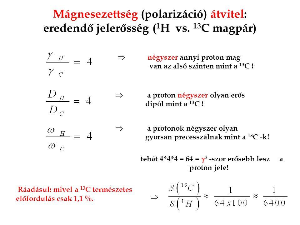 Mágnesezettség (polarizáció) átvitel: eredendő jelerősség (1H vs