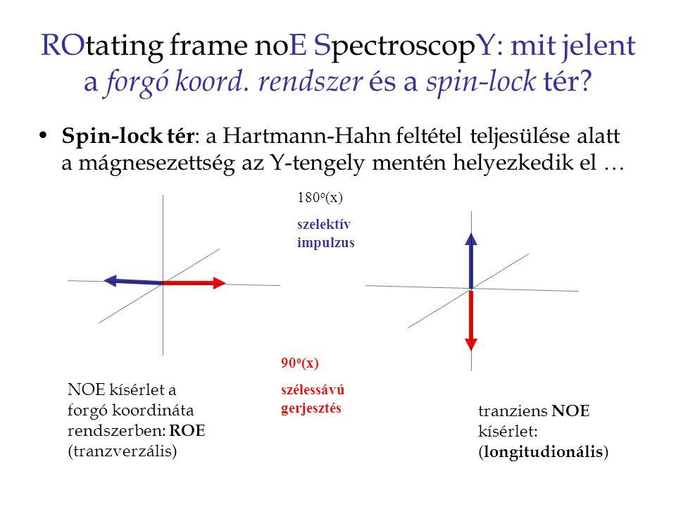 ROtating frame noE SpectroscopY: mit jelent a forgó koord