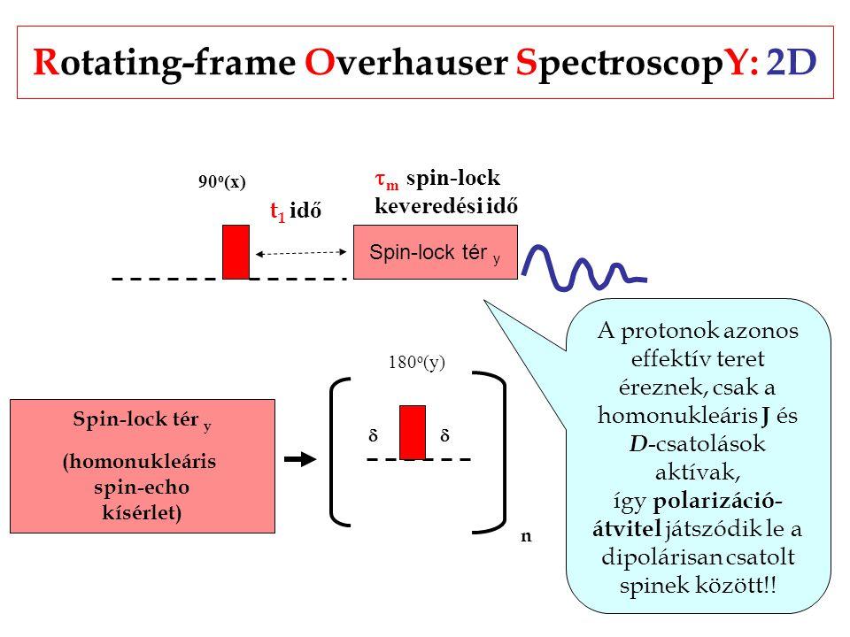 Rotating-frame Overhauser SpectroscopY: 2D