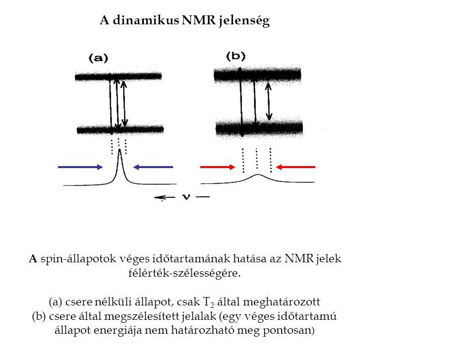A dinamikus NMR jelenség A spin-állapotok véges időtartamának hatása az NMR jelek félérték-szélességére.